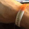 IMG 0859 e1444161847571 100x100 - ARNI 3-colour wristband - Stroke Exercise Training