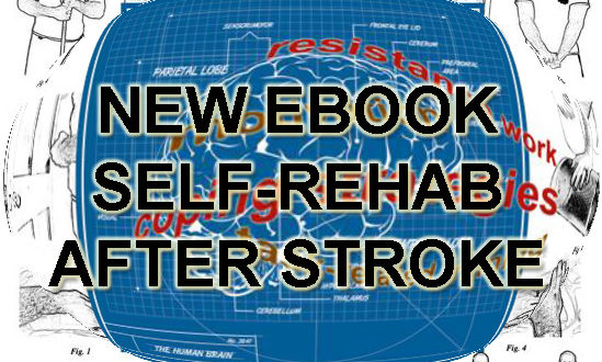arni ebook rehab stroke suc 549x330 - New Ebook! Bestseller Stroke Survivor Manual - Stroke Exercise Training