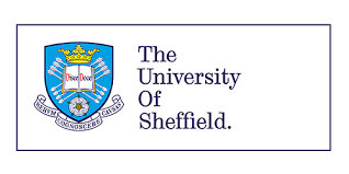 University of Sheffield logo ARNI STROKE REHABILITATION NEURO - Can Increasing your Well-being Positively Affect your Rehab? - Stroke Exercise Training